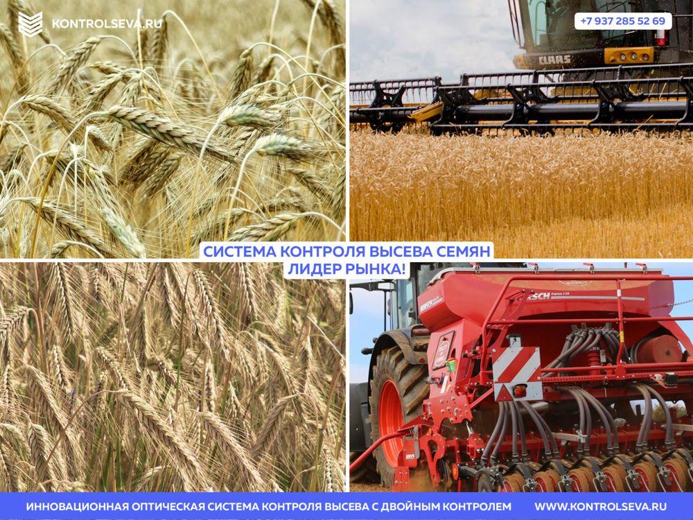 Сеялка зерновая Клен продам дешево