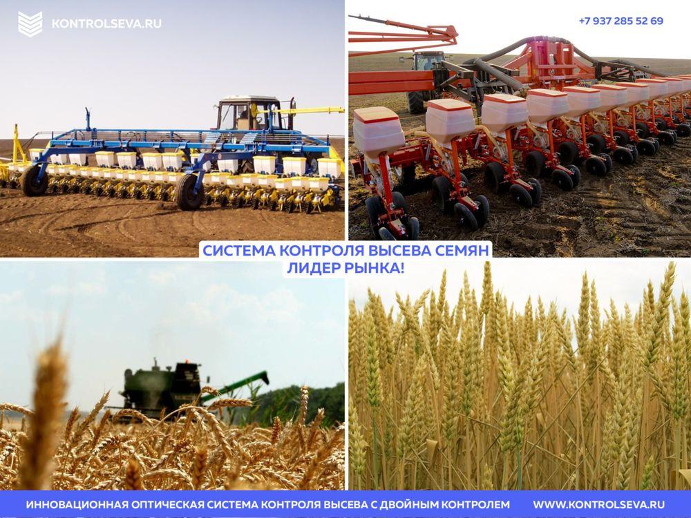Норма сева пшеницы на 1 га